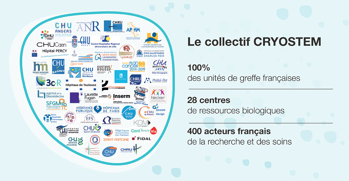 le collectif cryostem