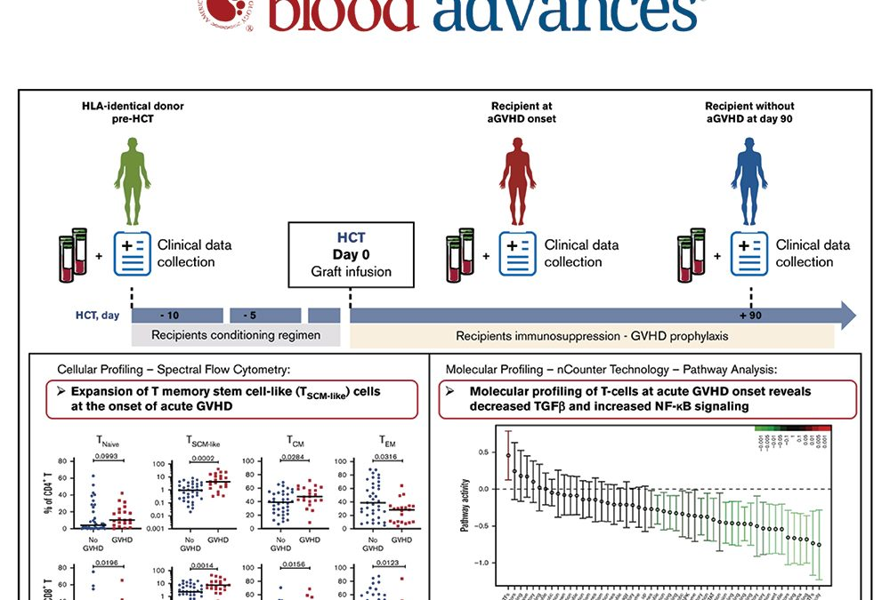 Publication dans Blood Advances